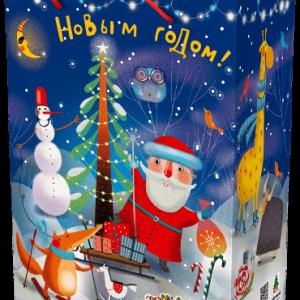 Новогодний подарок пенал «Лес чудес» 2500 граммов